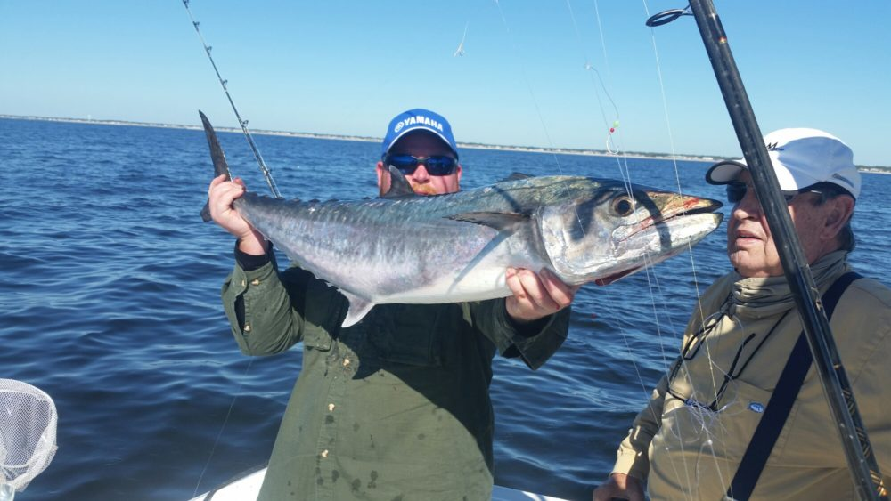 October 2015 holden beach charter fishing rigged for Holden beach fishing